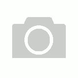 Tiger Tribe - Colouring Set - Dinosaur